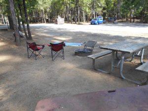 Giant Cedar Grove Trailhead