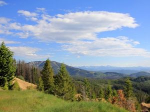 Butte-Jefferson Ranger Districts