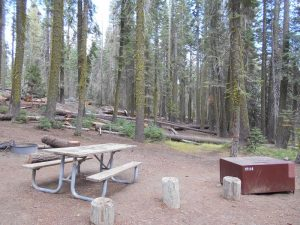 Terwilliger (Cougar) Hot Springs Trailhead