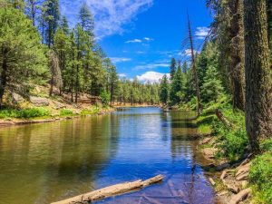 North Fork/KP Rim Trailhead