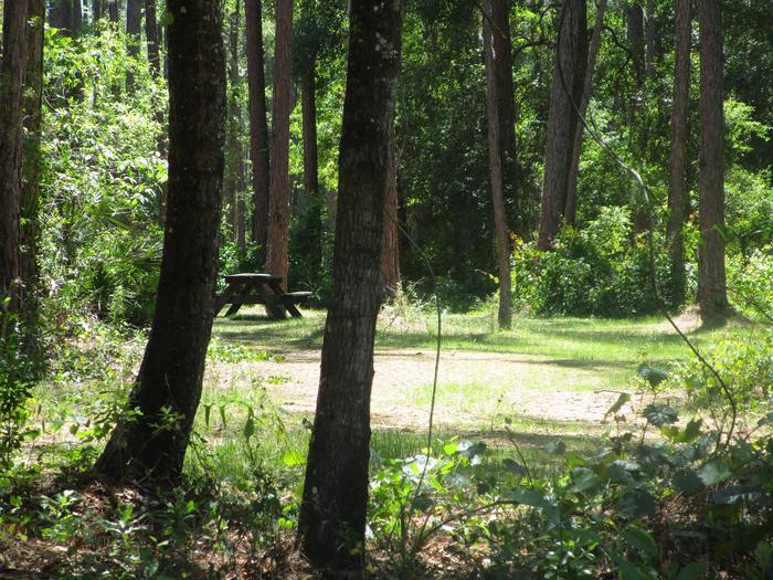 Osceola Shelter