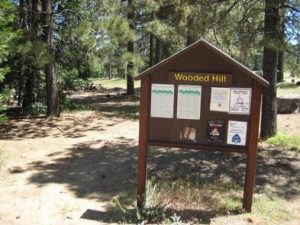 WOODED HILL GROUP