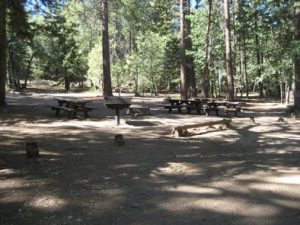 BUTTERCUP GROUP CAMP
