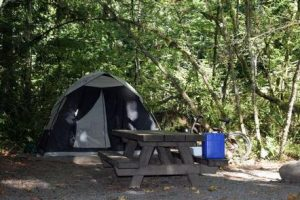 Money Creek Campground