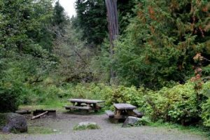 Shannon Creek Campground
