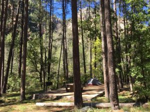 PINE FLAT CAMPGROUND WEST