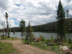TEAL LAKE GROUP CAMPSITE