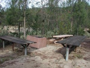 Whiskey Creek Group Picnic Area (Whiskeytown NRA)