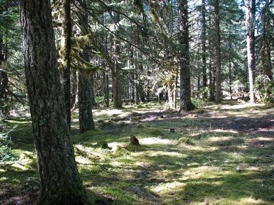 RILEY HORSE CAMPGROUND
