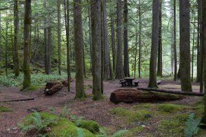 North Fork Campground (WA)