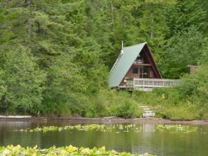 HARVEY LAKE CABIN