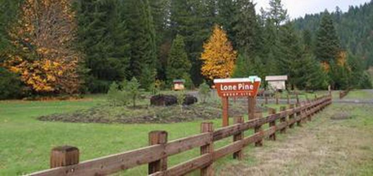 Lone Pine Group Campground (Reservation)