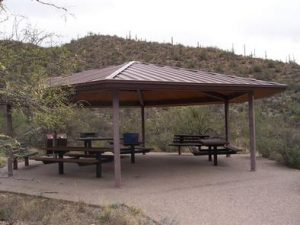 SABINO CANYON RECREATION AREA CACTUS RAMADA 2