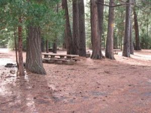 CAMP 4 GROUP CAMPGROUND