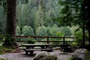 Mineral Park Campground