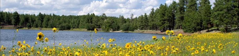 DOGTOWN LAKE CAMPGROUND AND GROUP