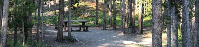Lodgepole Campground (MT)