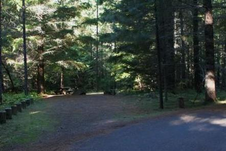 Deer Flat Group Site (Horseshoe Bend Campground)