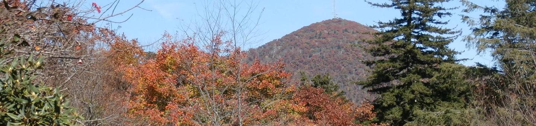 MOUNT PISGAH CAMPGROUND