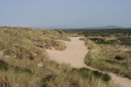 HORSFALL BEACH