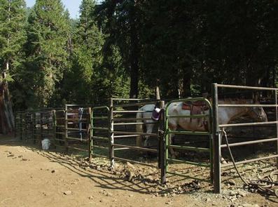 CARTER MEADOWS HORSE GROUP