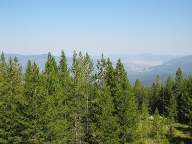 WEST FORK BUTTE LOOKOUT