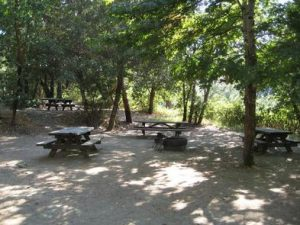 CURLY JACK CAMPGROUND