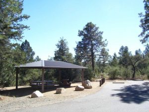 LYNX CAMPGROUND