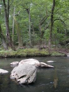 Rock Creek Park Group Picnic Areas