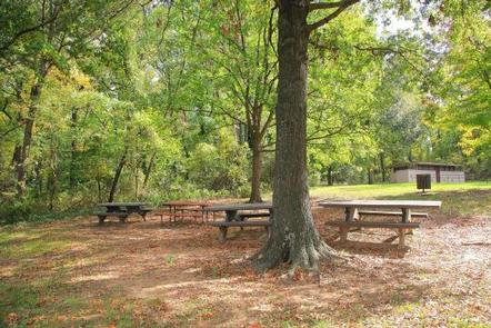 Fort Dupont Park Picnic Areas