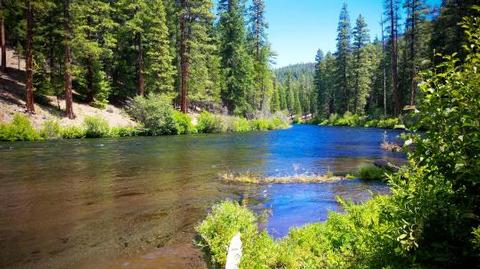Pioneer Ford Campground
