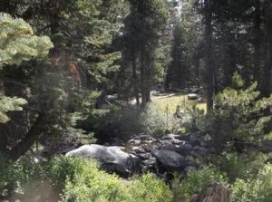 WRIGHTS LAKE EQUESTRIAN CAMPGROUND