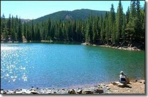 BEAR LAKE CAMPGROUND (CO)