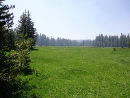 Big Meadow Campground