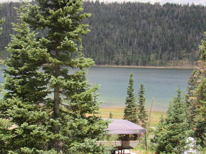 SPRUCES CAMPGROUND (DIXIE NF)