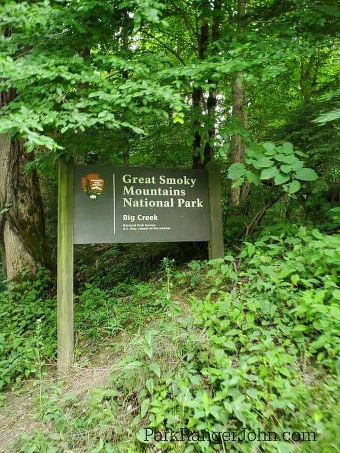 BIG CREEK CAMPGROUND (GREAT SMOKY MOUNTAINS NATIONAL PARK)