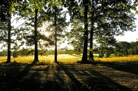 Washington-Rochambeau Revolutionary Route National Historic Trail